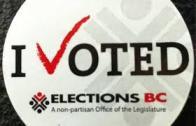 2013 i voted